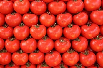 red juicy tomatoes in Chiang Mai